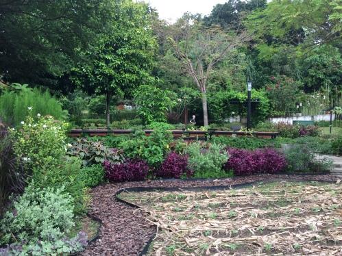 Jardins potagers à HortPark