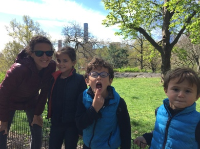 Une dent en moins à Central Park